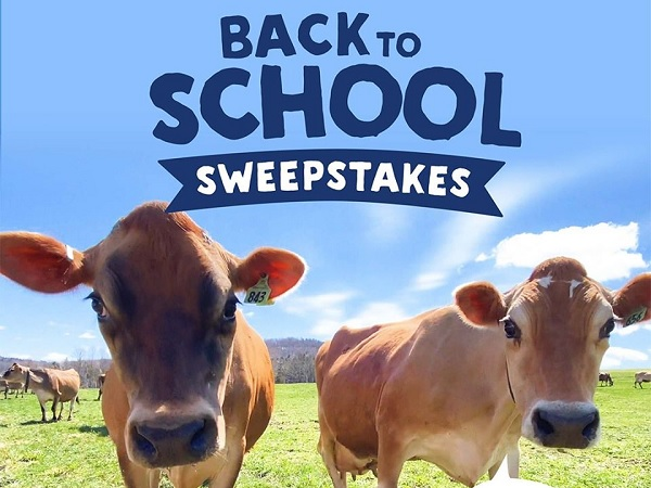 Stonyfield Back to School Sweepstakes 2020