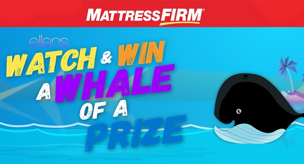 ellen mattress firm giveaway mattress firm sweepstakes 28 images acm sweepstakes 7504