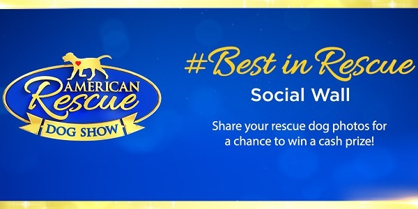 Hallmarkchannel.com Best In Rescue At Home Contest