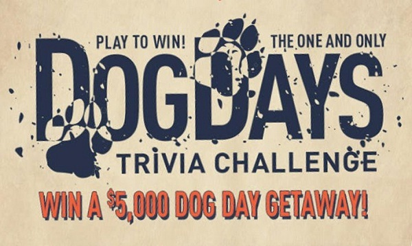 Road iD Contest: Win A Dog Day Getaway