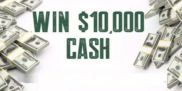 Steel Reserve Mystery Flavor Sweepstakes: Win $10000 Cash